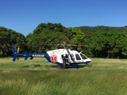 Helicopter landing on grass